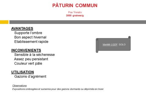 paturin-commun
